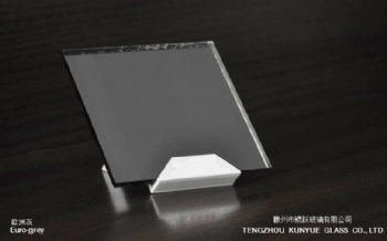 Euro-grey Color Mirror